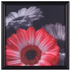 Cuadro Decorativo Flor Roja 2 - Envío Gratuito