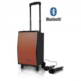 Pure Acoustics Bafle Portátil MCP 100 Negro con naranja - Envío Gratuito