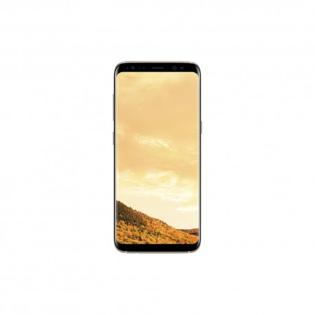 Samsung Galaxy S8 Plus 64 GB Oro Maple - Envío Gratuito