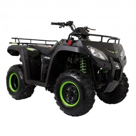 Cuatrimoto Italika ATV250 Negro con Verde